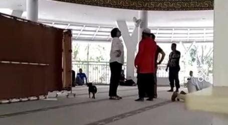 MUI: Umat Islam Jangan Terprovokasi Perempuan Bawa Anjing ke Masjid