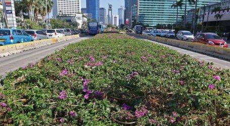Hijaukan Jakarta, Pemprov DKI Tanam Puluhan Ribu Pohon