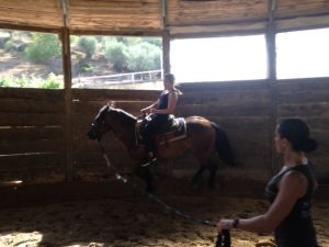 horseback riding minardi wine tour