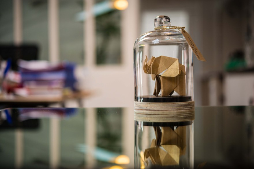 Florigami_CollectionAutomneHiver2014_Elephant