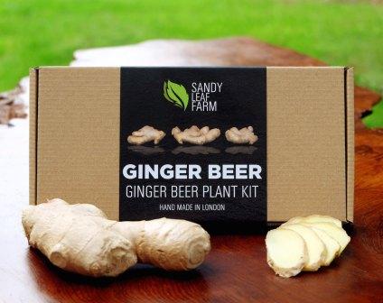 Kit de bière de gingembre - Sandy Leaf Farm