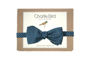 Noeud papillon réversible à pois et carreaux - Charlie bird bowties