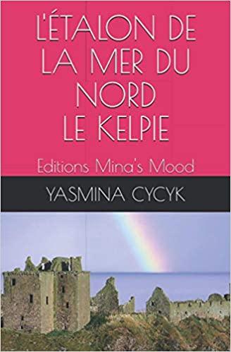 letalon-de-la-mer-du-nord-1