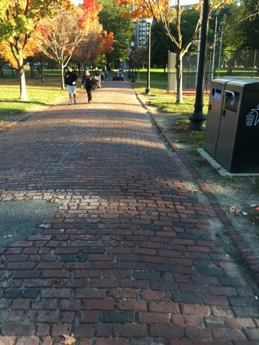 Love all the brick lined pathways.
