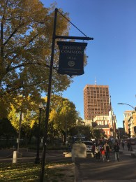 Boston Common. Didn't see this sign until the very end.