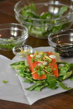 Ginger-Soy Salmon with Bok Choy (www.mincedblog.com)
