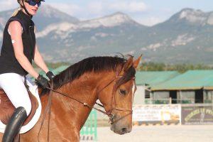 J'aime mon sport : équitation en compétition