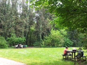 Pic-nic-parco delle Bertone