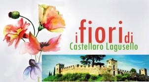 i fiori di Castellaro