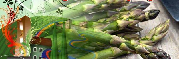 festa dell'asparago.jpg