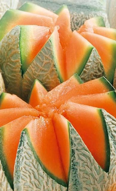 festa del melone rodigo