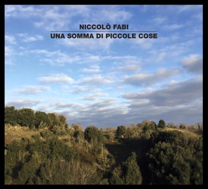 UNA SOMMA DI PICCOLE COSE_cover_b (1).jpg