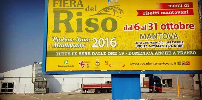 FIERA DEL RISO 2016 - MANTOVA.jpg