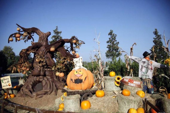 minitalia-leolandia-halloween-.jpg