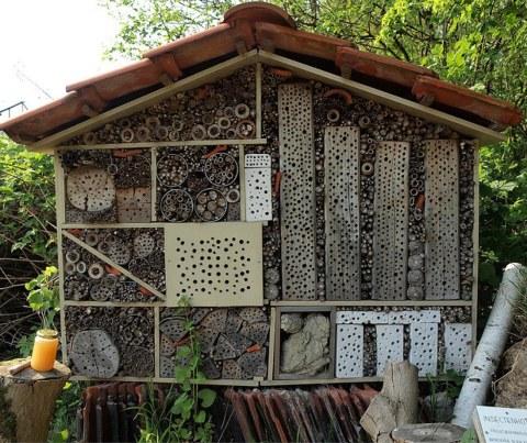 Bee Hotel PER LE API.jpg