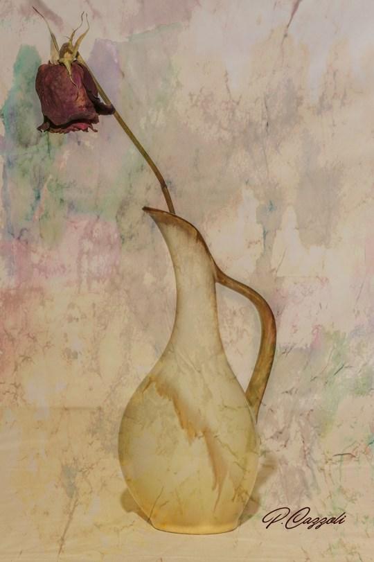 Cazzoli Anfora con rosa 21bb1.jpg