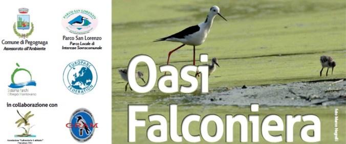 oasi falconiera copia.jpg