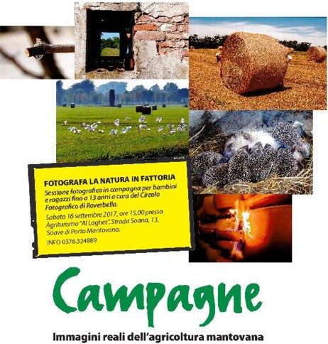 campagne 2017