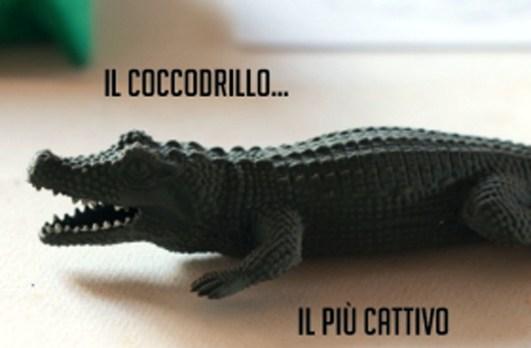 il coccodrillo.jpg