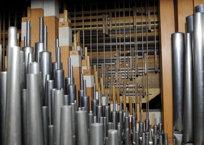 organo 1.jpg