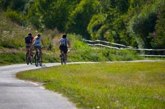 biciclette-campagna-sport-DI
