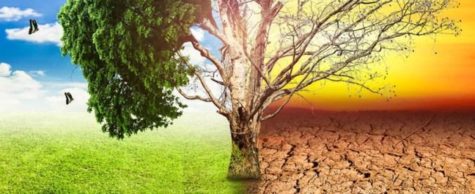 cambia clima