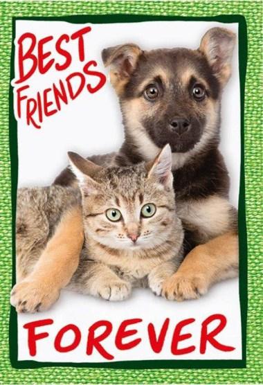 Best Friends Forever_Amici Cucciolotti_figurina.jpg