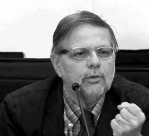 Gian Mario Anselmi
