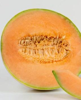 Melone Mantovano liscio