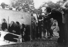 Premio Suzzara - Ruffini mostra, al puledro vinto, il suo quadro, 1952