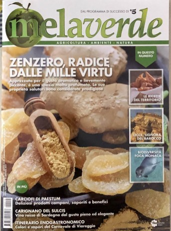 MELAVERDE MAGAZINE febbraio 2019 copertina 3010