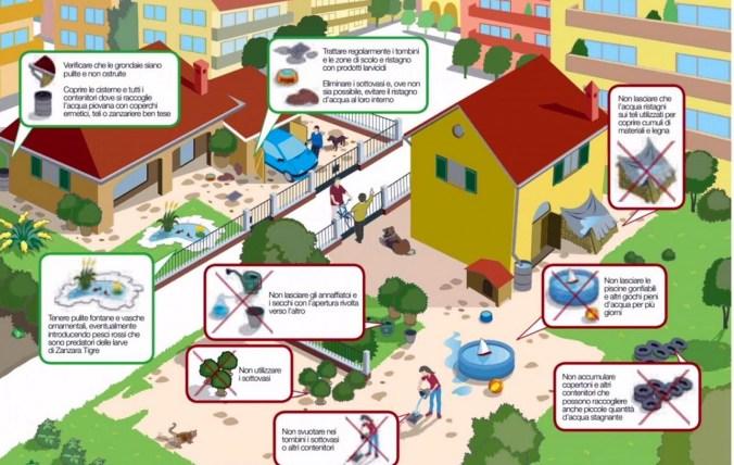 prevenzione zanzara tigre