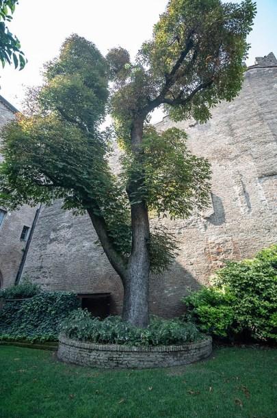Interno Verde Palazzo Castiglioni 3.jpg