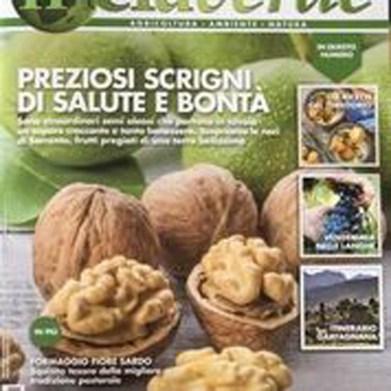 melaverde magazine.jpg