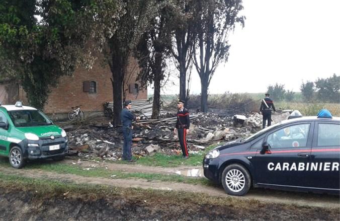carabinieri e forestale.jpg