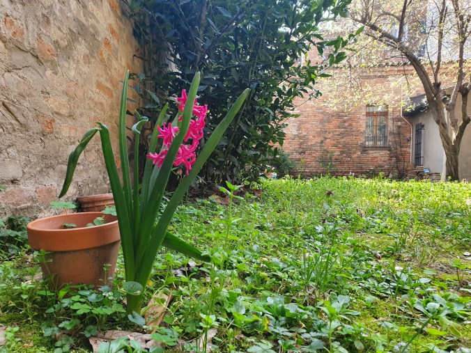 giardino ilturco interno verde 1
