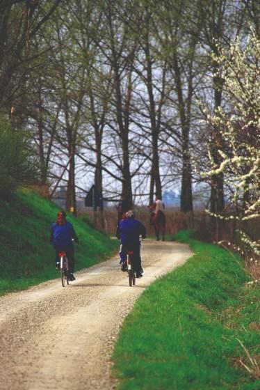 Bici nel percorso ciclopedonale di via Canale a Cotignola.jpg