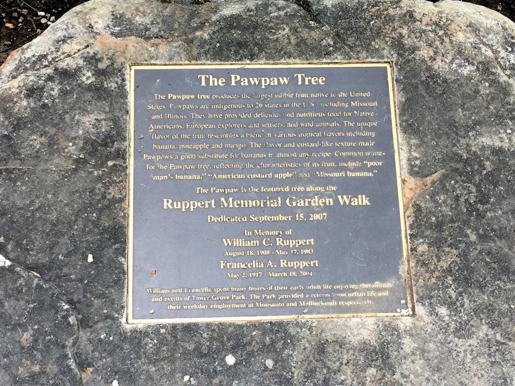 Pawpaw tree dedication plaque