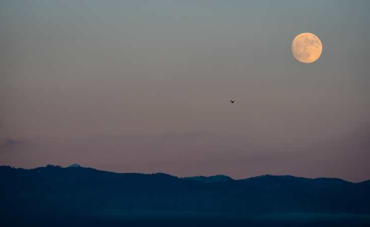 The Last moon of 2017