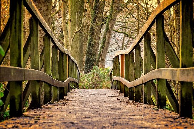Mind & beauty - Pont à traverser lors d'une randonnée