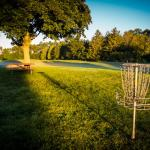The Disc Golf Practice That Lowers Your Score and Makes Course Management Easy