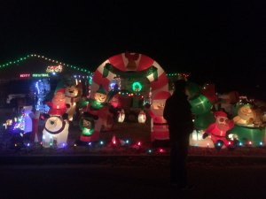 A yard filled with inflatible Christmas decorations