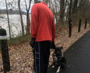 Man in an orange sweatshirt petting a brindle- and white-colored dog on a walking path with a river in the background.