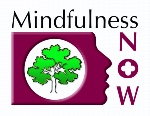 Mindfulness now logo