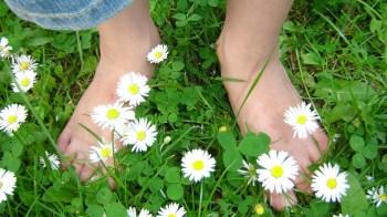 A Barefoot Walk