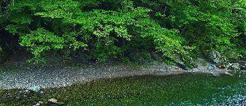 river_00045.jpg-2.jpg