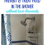 How to Prevent and Treat Mold in the Shower