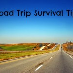 Road Trip Survival Tips mindfulmomma.com