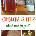 Kombucha vs Kefir - How do you make them and which of these fermented beverages is best for you? | fermentation | DIY | probiotics | healthy drink | Mindful Momma