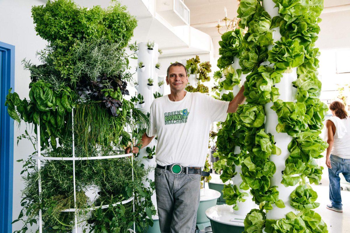 Green bronx machine teaching kids through vegetable gardening for Indoor gardening machine